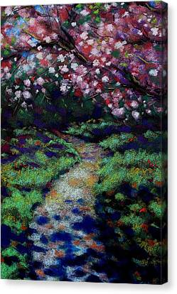 Giclee Trees Canvas Print - Cherry Blossom Walk  by John  Nolan
