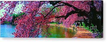 Cherry Blossom Walk Tidal Basin At 17th Street Canvas Print