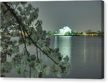 Cherry Blossoms 2013 - 102 Canvas Print by Metro DC Photography