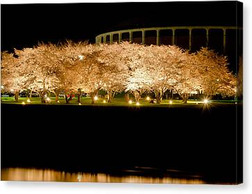 Cherry Blossoms Across The Hocking Canvas Print by Shirley Tinkham