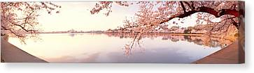 Cherry Blossoms Canvas Print - Cherry Blossoms At The Lakeside by Panoramic Images