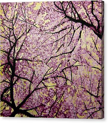 Cherry Blossoms Canvas Print by Bobby Zeik