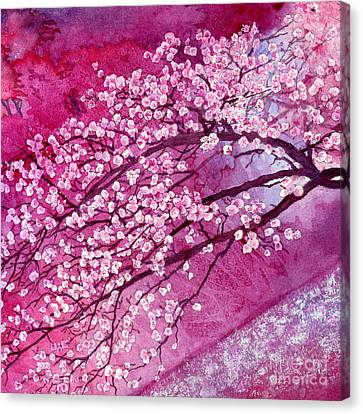 Cherry Blossoms Canvas Print by Hailey E Herrera