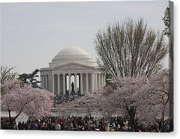 Cherry Blossoms With Jefferson Memorial - Washington Dc - 01132 Canvas Print by DC Photographer