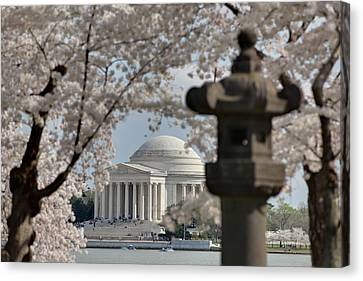 Cherry Blossoms With Jefferson Memorial - Washington Dc - 011325 Canvas Print by DC Photographer