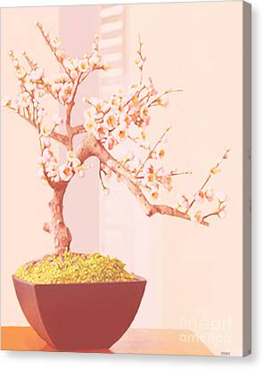 Cherry Bonsai Tree Canvas Print by Marian Cates