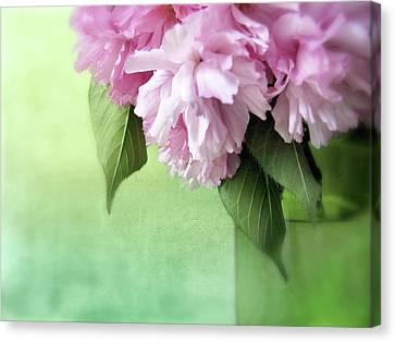 Cherry Bouquet Canvas Print