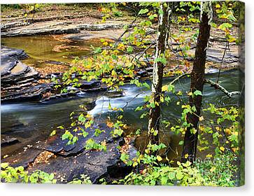 Cherry Falls Elk River Canvas Print by Thomas R Fletcher