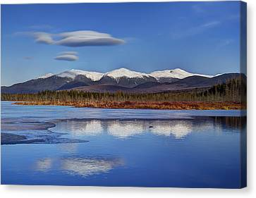 Cherry Pond Lenticulars Canvas Print
