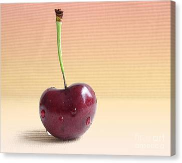 Cherry Portrait Two Canvas Print by Arlene Carmel