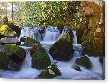Cherry Run Cascades #1 - Bald Eagle State Forest Canvas Print