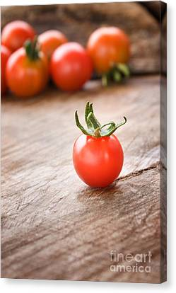 Cherry Tomatoes Background Canvas Print by Mythja  Photography