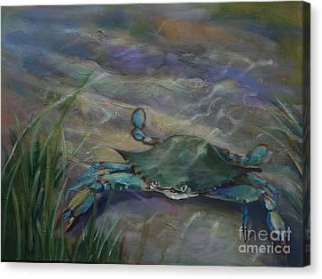 Chesapeake Bay Blue Crab Canvas Print