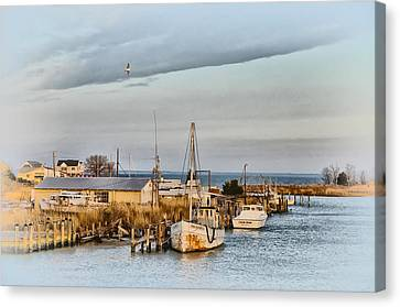 Chesapeake Fishing Boats Canvas Print by Bill Cannon