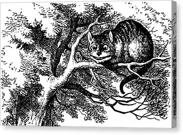 Cheshire Cat Canvas Print - Cheshire Cat Smiling by John Tenniel
