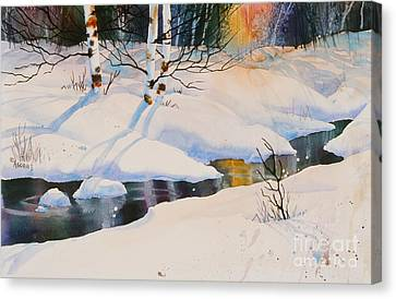 Chester Creek Shadows Canvas Print by Teresa Ascone