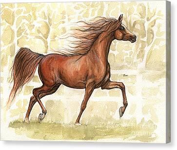 Chestnut Arabian Horse 2014 02 12 Canvas Print by Angel  Tarantella