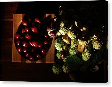 Canvas Print featuring the photograph Chestnuts by David Andersen