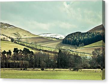 Cheviot Hills Canvas Print by Tom Gowanlock