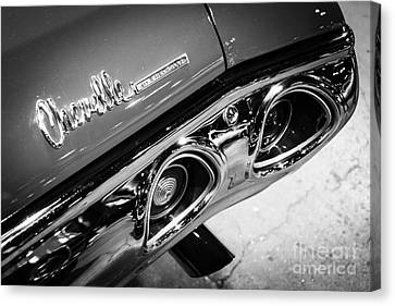 Chevrolet Chevelle Emblem Black And White Picture Canvas Print by Paul Velgos