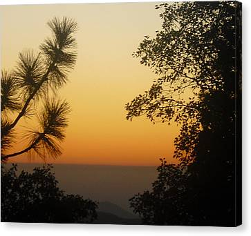 Canvas Print featuring the photograph Chiaronaturo IIi by Ursel Hamm and Kristen R Kennedy