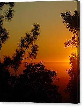 Canvas Print featuring the photograph Chiaronaturo Iv by Ursel Hamm and Kristen R Kennedy