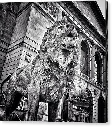 Lion Statue At Art Institute Of Chicago Canvas Print by Paul Velgos