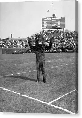 Mascots Canvas Print - Chicago Bears Mascot In Front Of Wrigley Field Scoreboard by Retro Images Archive