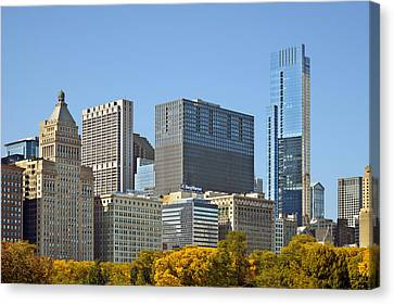 Chicago Skyline From Millenium Park II Canvas Print by Christine Till