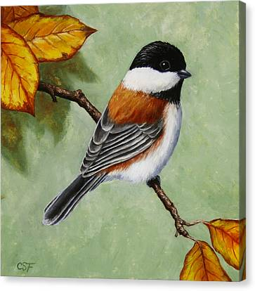 Chickadee - Autumn Charm Canvas Print by Crista Forest