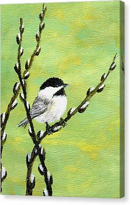 Chickadee On Pussy Willow - Bird 1 Canvas Print by Kathleen McDermott