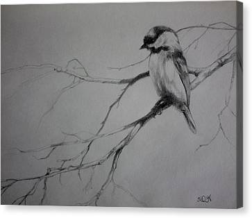 Chickadee Sketch Canvas Print by Derrick Higgins
