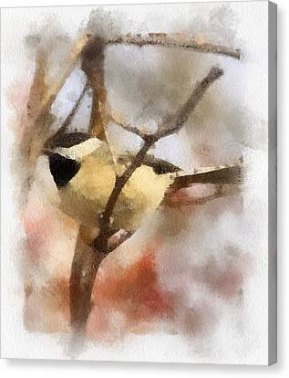 Chickadee Watercolor Canvas Print by Kerri Farley