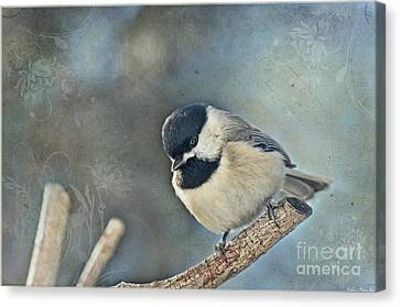 Chickadee With Texture Canvas Print by Debbie Portwood