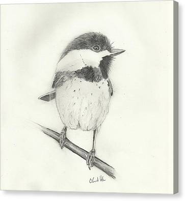 Chickadee#2 Canvas Print by Christopher Hughes