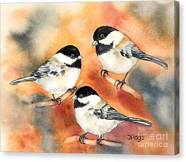 Chickadees Trio Canvas Print