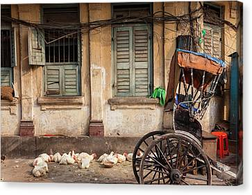 Chickens And Rickshaw On Street Canvas Print by Peter Adams