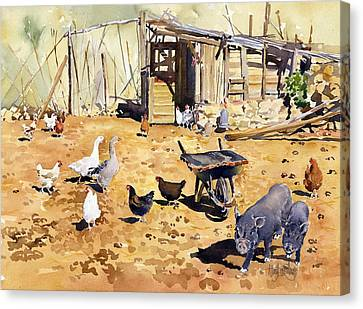Chickens Geese And Little Pigs Canvas Print by Margaret Merry