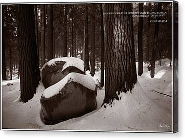 Canvas Print featuring the photograph Chief Seattle - Sunlight On A Winter Woods by Wayne King