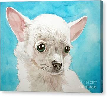 Chihuahua Dog White Canvas Print