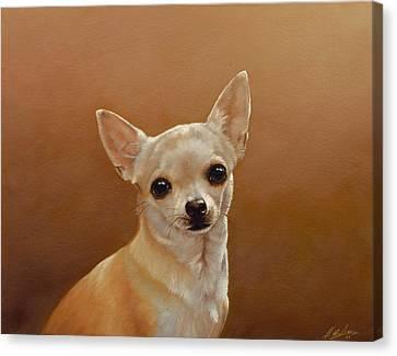 Chihuahua I Canvas Print by John Silver