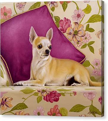 Chihuahua II Canvas Print by John Silver