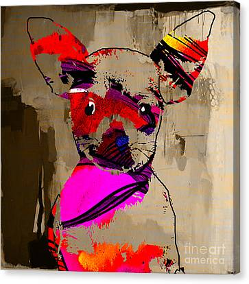 Chihuahua Canvas Print by Marvin Blaine