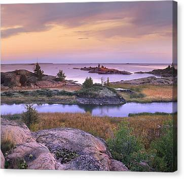 Chikanishing Creek Killarney Provincial Canvas Print by Tim Fitzharris