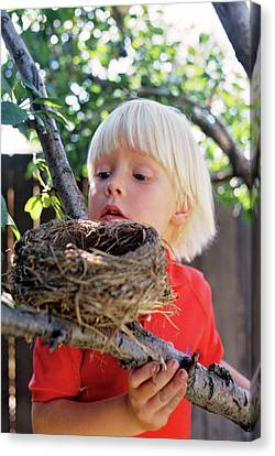 Nature Study Canvas Print - Child Looking Into Birds Nest by Vintage Images