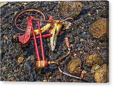 Childhood Bike Canvas Print by Garry Gay