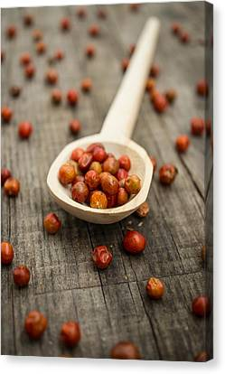 Chile Chiltepin Canvas Print by Aged Pixel