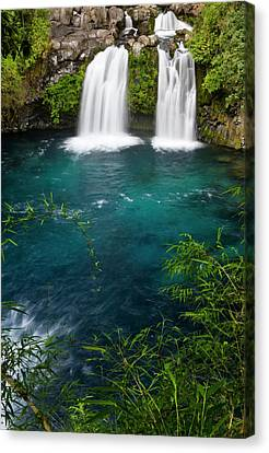 Chile South America Waterfalls At Ojos Canvas Print by Scott T. Smith