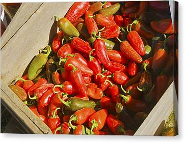 Chili Peppers At Maine Farmers Market Photograph Canvas Print by Keith Webber Jr