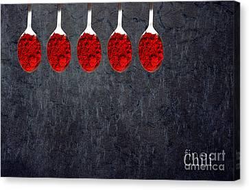 Chili Powder  Canvas Print by Aimelle